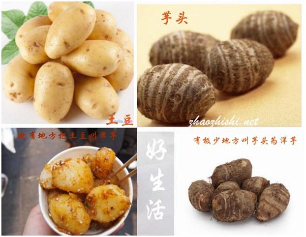中国什么地方的人管土豆叫洋芋